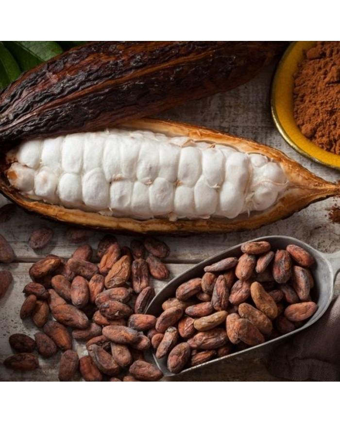 Cocoa beans Akesson Brazílie Forastero Raw