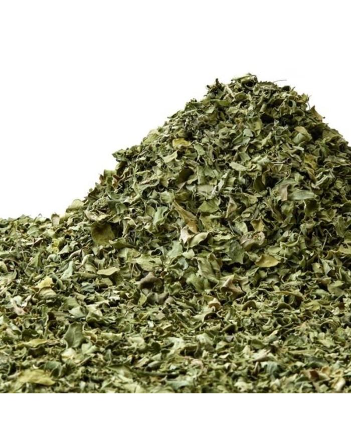 Moringa leafs