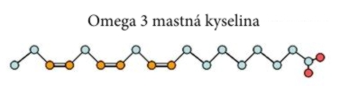 Omega 3 mastná kyselina