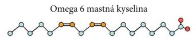 Omega 6 mastná kyselina